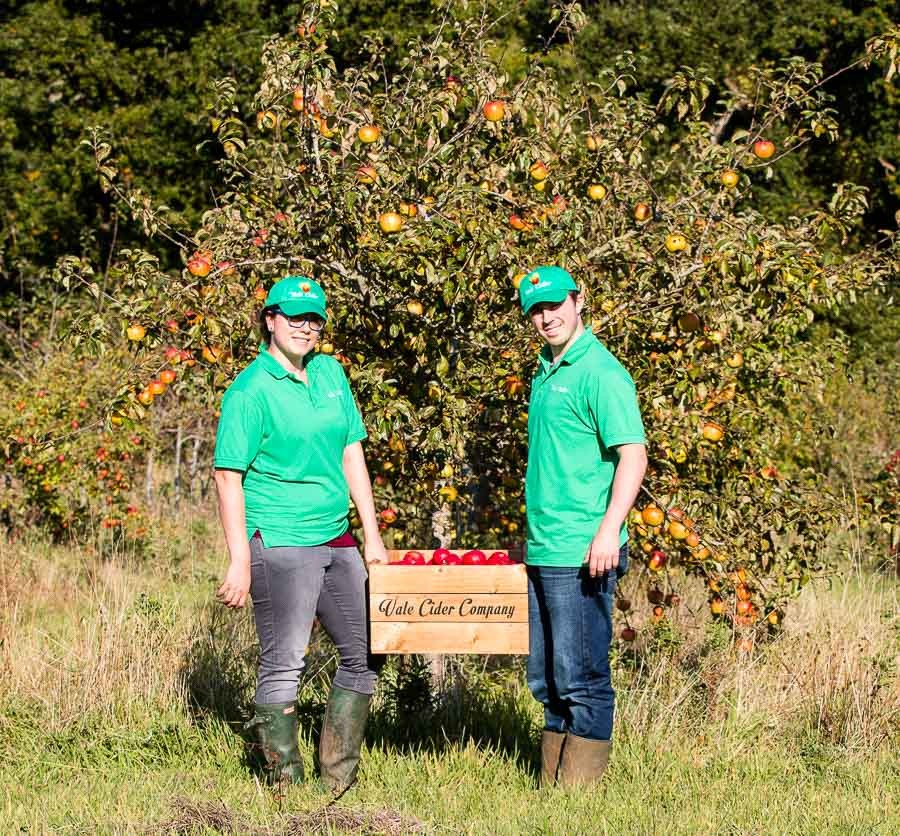 Carrying-box-of-cider-apples-in-orchard-at-harvest-time