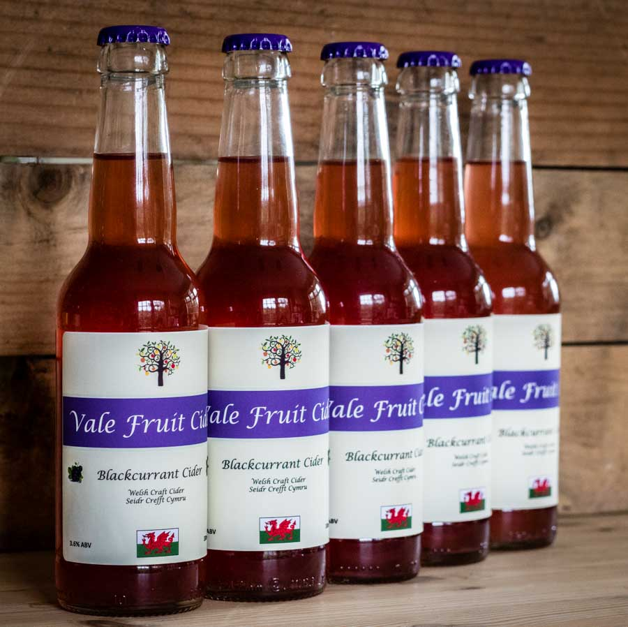 5 bottles of Blackcurrant Vale Fruit Cider