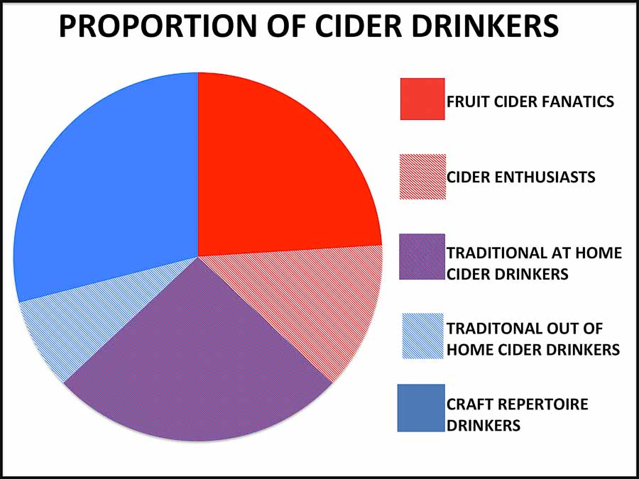 Pie chart showing types of cider drinker