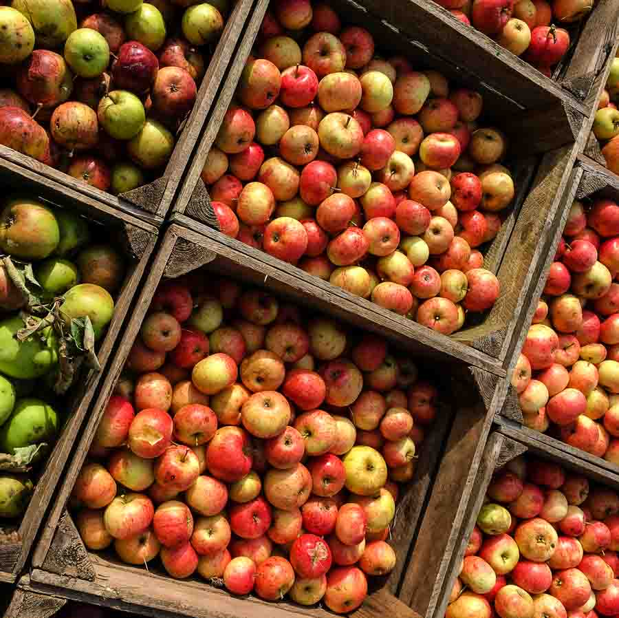 Boxes full of apples