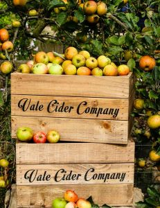 boxes of vale cider apples
