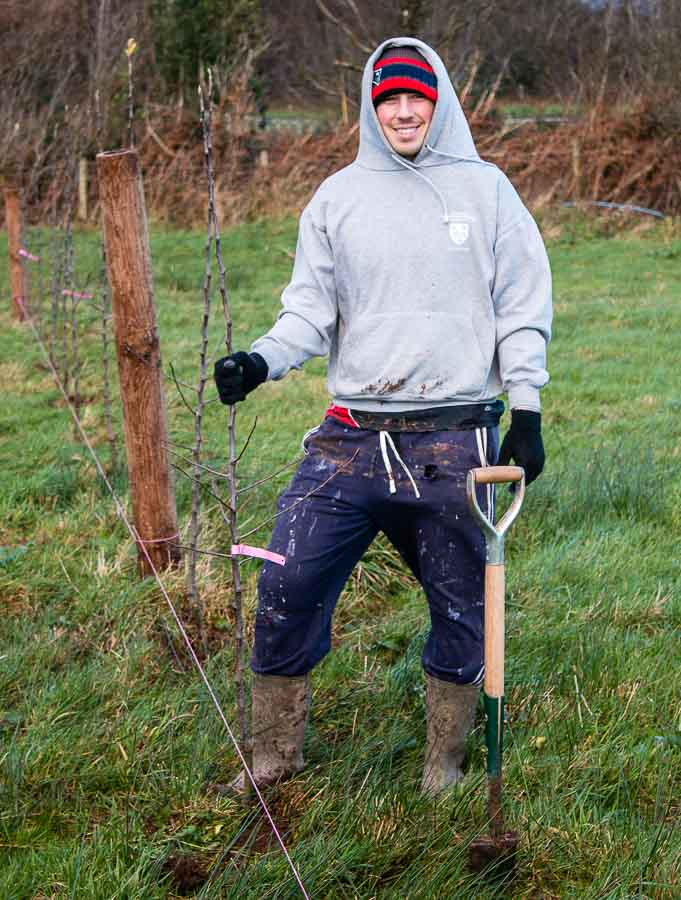 Planting apple trees in Vale Cider orchard