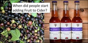 Blackcurrants and bottles of blackcurrant cider