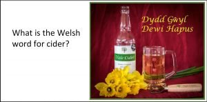 Cider and daffodils on St David's Day