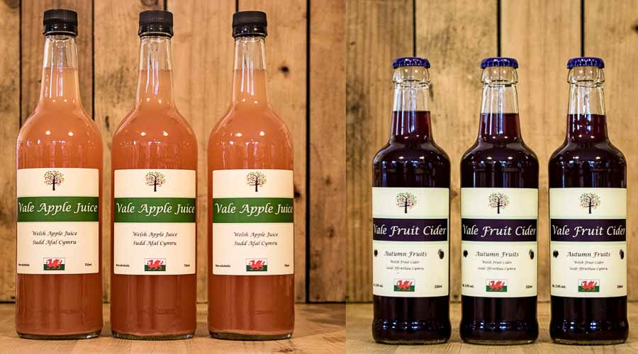 bottles of apple juice and autumn fruits cider